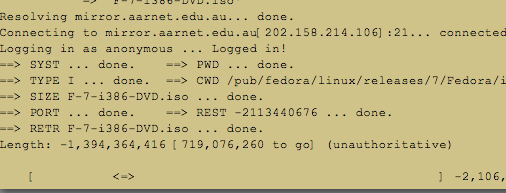 negative file sizes displayed by wget